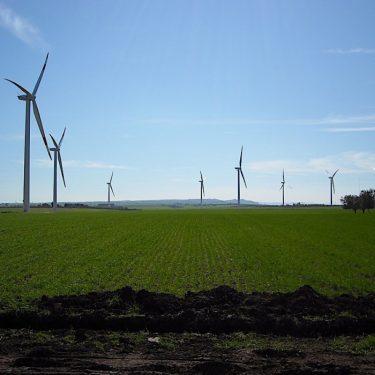 BFP_windfarm